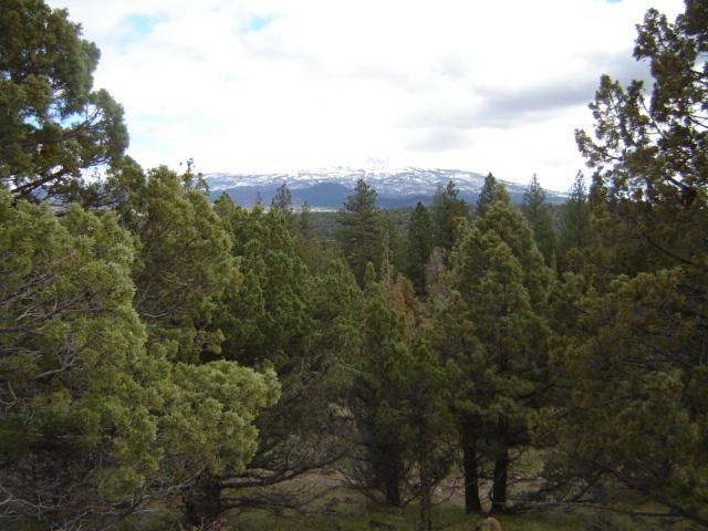 3 Lots Dwinnell Road Lake Shasta CA