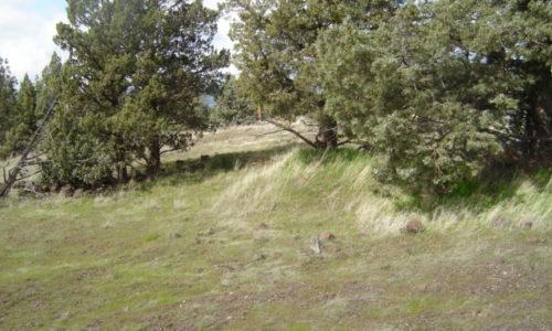 Montague CA Siskiyou County
